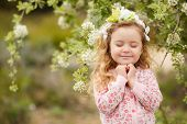 foto of tree-flower  - Little chubby girl with curly hair and a charming smile - JPG