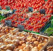 picture of farmers market vegetables  - Fruits and vegetables for sale in farmers market - JPG