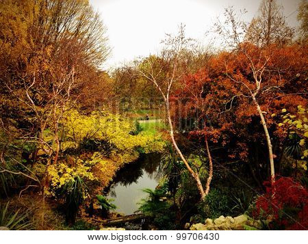 Autumn Landscape Background In Hyde Park London