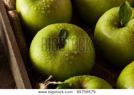 Green Granny Smith Apple