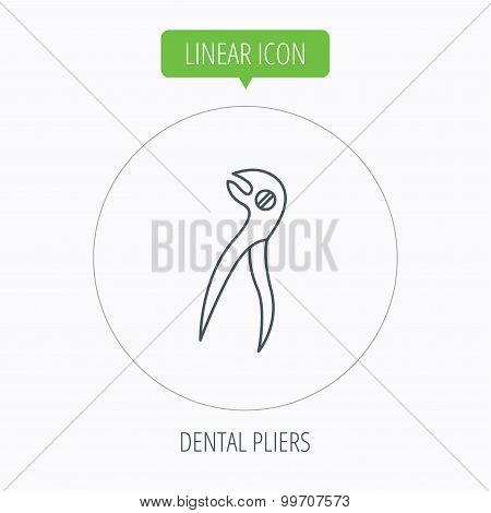 Dental pliers icon. Stomatological forceps tool.
