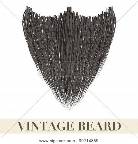 Realistic Black Beard.