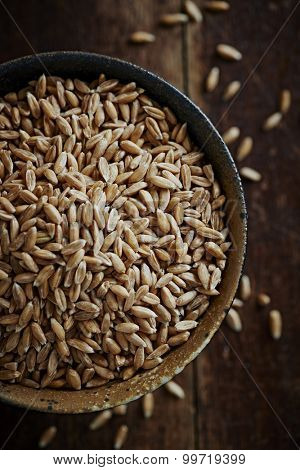 Organic spelt wheat in a ceramic dish (close up)