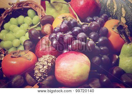 Nostalgic Autumn Harvest Fruit And Vegetables.