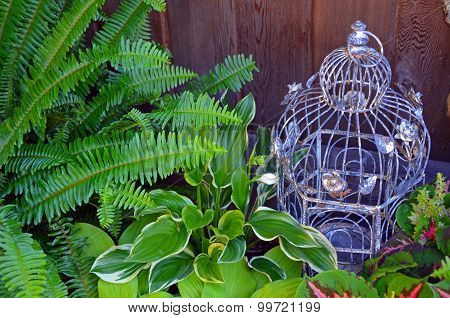 Decorative Bird Cage In Green Garden