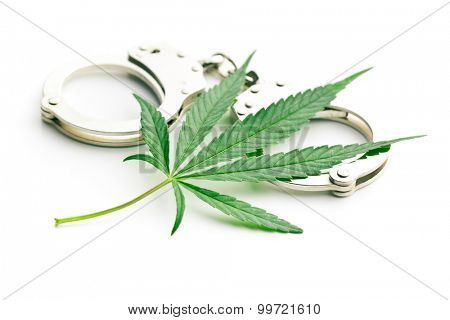the cannabis leaf and handcuffs