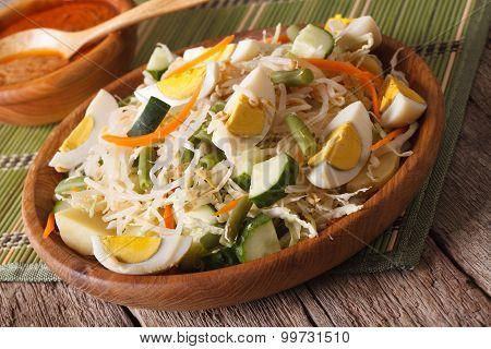 Traditional Indonesian Salad Gado-gado Close-up. Horizontal