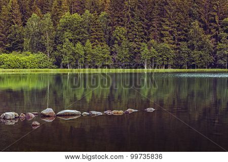 Peaceful Lake Scenery