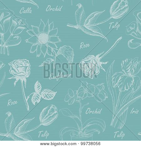 Seamless pattern with  flowers. Iris, calla lily, tulip, orchid, sunflower and rose