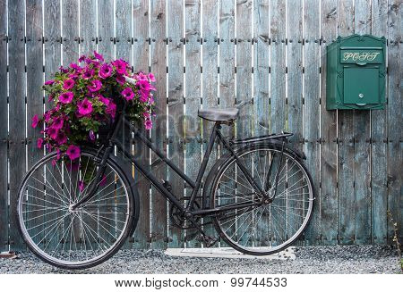 old vintage bicycle with flower basket