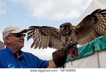Tethered owl