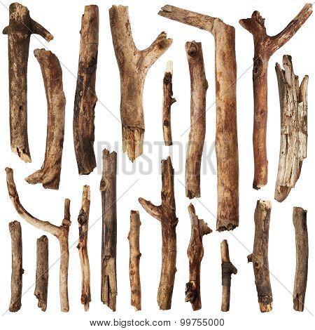 Tree Sticks. Set