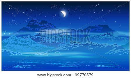 Overgrown Coast At Night