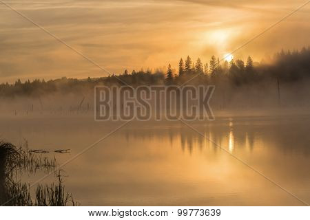 Lake Sunrise Fog Golden