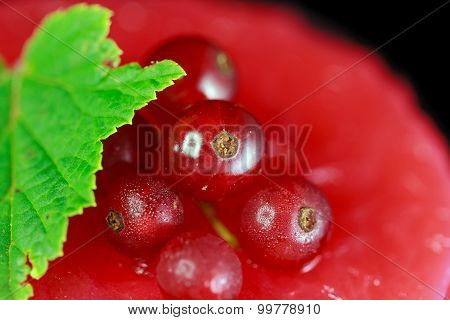 Closeup of a redcurrant cake decorated with berries