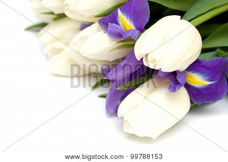 Spring Tulips And Iris Flowers