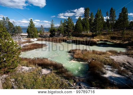 Green hotspring in Yellowstone National Park