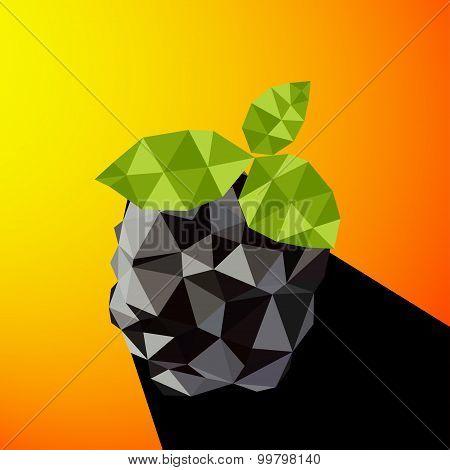 Vector Illustration Of A Blackberry