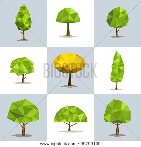 Set polygonal trees with different crowns