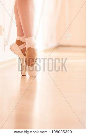 Legs of young ballerina.