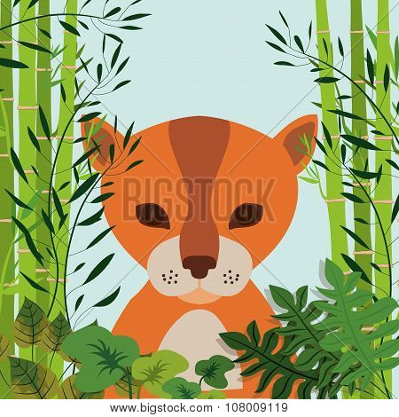 animal wildlife design