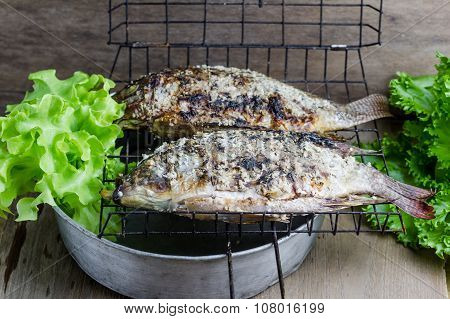 Salt Crusted Grilled Nile Tilapia Fish