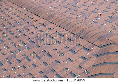 Top View Of Brown Roof Shingles With A Few Autumn Leaves