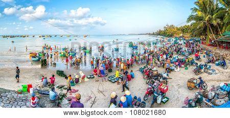 Early market average living marine Binh Thuan