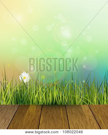 Vector Illustration Wood Floor And Green Grass