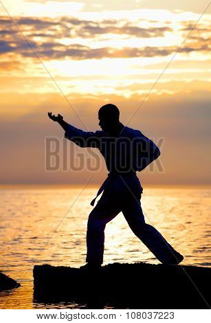 Karate fighter training