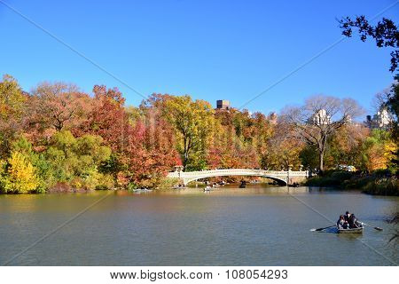 New York foliage autumn