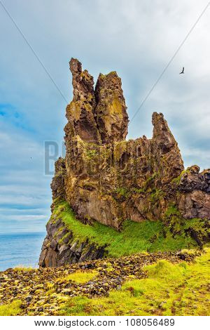 Gorgeous Iceland.  Picturesque rocks covered with moss green and yellow. Northern Atlantic coast