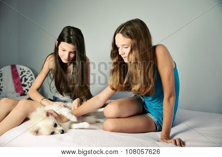 Two Teen Girls Stroking Pomeranian. Horizontal