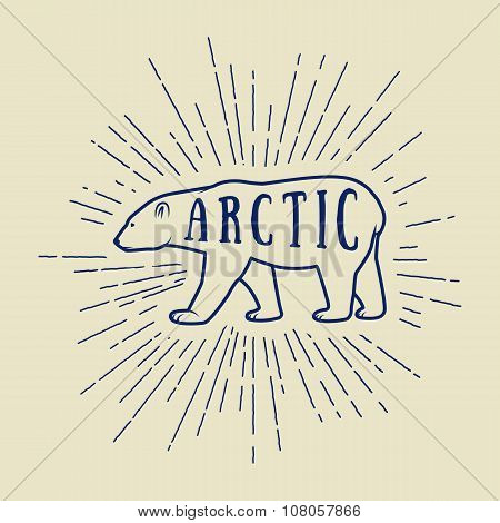 Vintage Arctic White Bear With Slogan. Vector Illustration