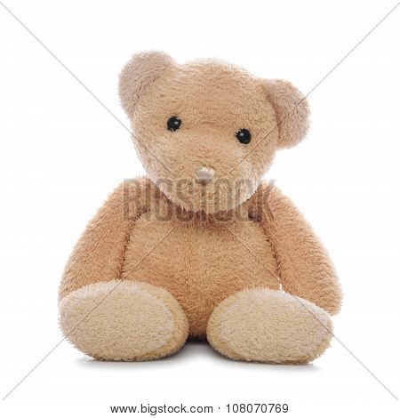 Teddy bear isolated.