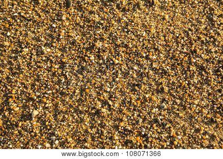 Sea beach sand with pebbles texture.