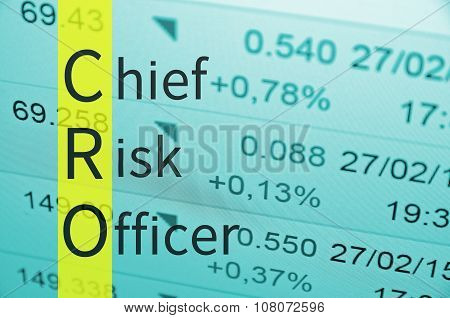 Chief risk officer