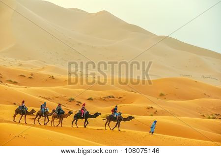 MERZOUGA, MOROCCO, APRIL 13, 2015: Tourists take part in camels trip on sand dunes of Erg Chebbi