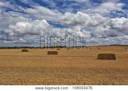 Straw Bales After Harvest Wheat In A Field