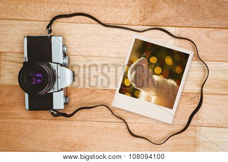 Instant photo against view of an old camera