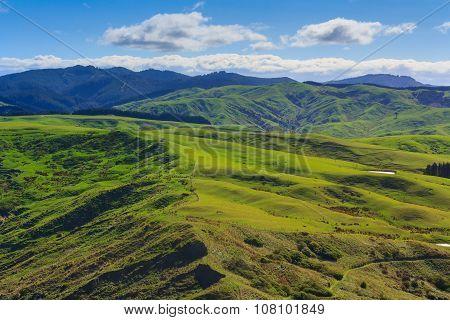 Green Hills Landscape, Location - Castlepoint, North Island, New Zealand