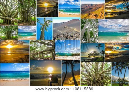 Maui pictures collage