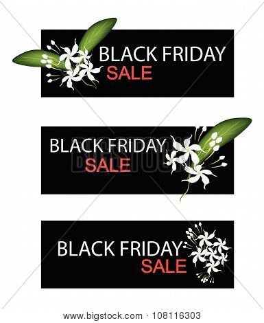 Cape Jasmine Flowers On Black Friday Sale Banner