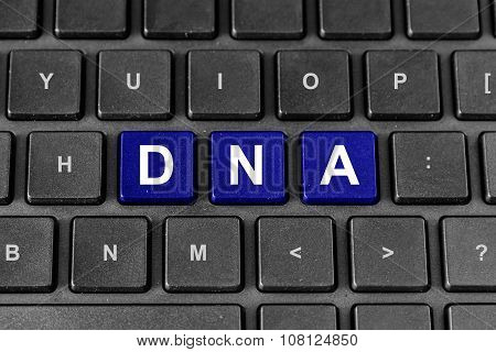 Dna Or Deoxyribonucleic Acid On Keyboard