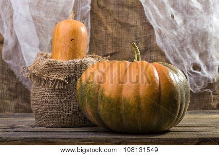 Still Life Pumpkin And Gourd