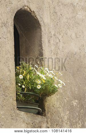 Flowered Hole