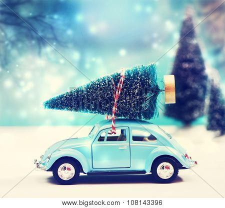 Car Carrying A Christmas Tree