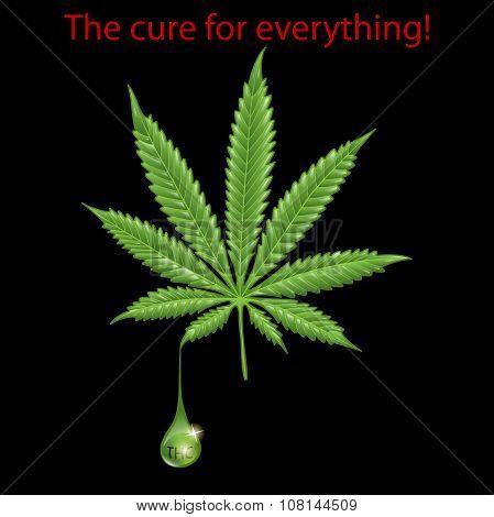 Marijuana leaf - THC