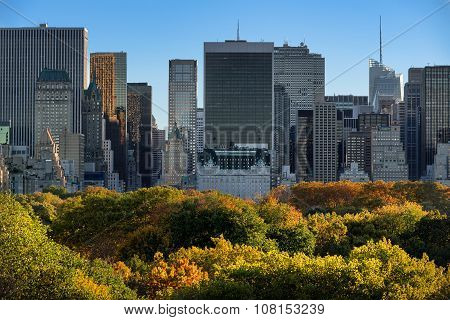 Central Park Fall Foliage And Midtown Manhattan Skyscrapers, New York