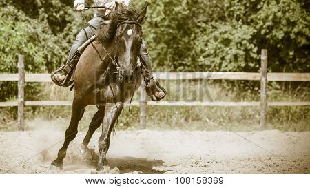 Jockey Training Riding Horse. Sport Activity